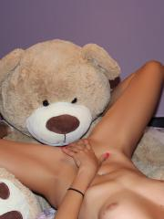 Andi Land has some fun in bed with her Teddy Bear